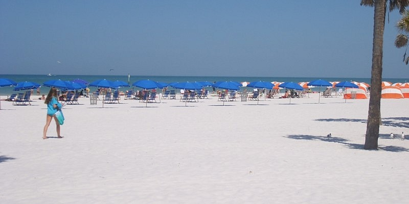 clearwater beaches golden soft white sands