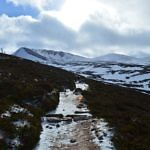 Cairngorm Mountains - Travelammo